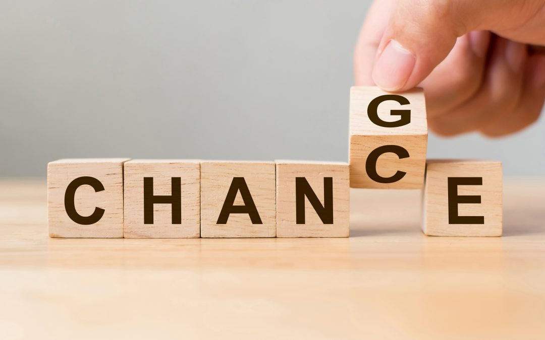 Using Transitional Objects for Successful Change Management